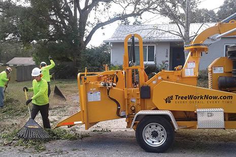 Orlando's Tree Service